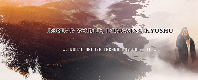 Qingdao Delong Technology Co., Ltd.